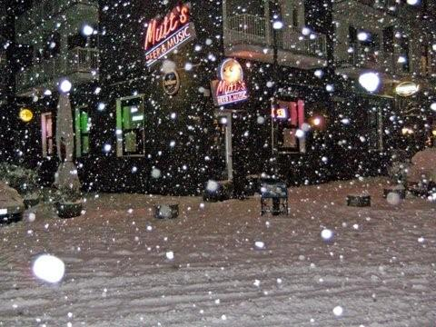2010_04_mutts.snow3 [1]